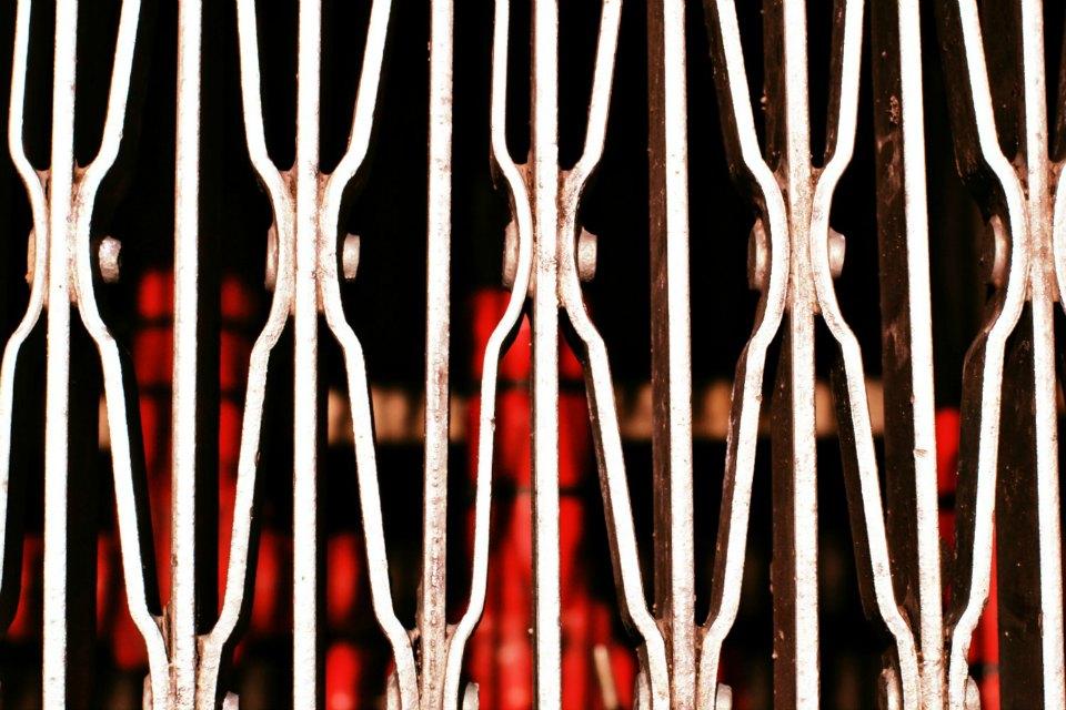 Iron Grate in Savannah Sidewalk